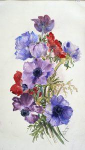 Flower 32ew